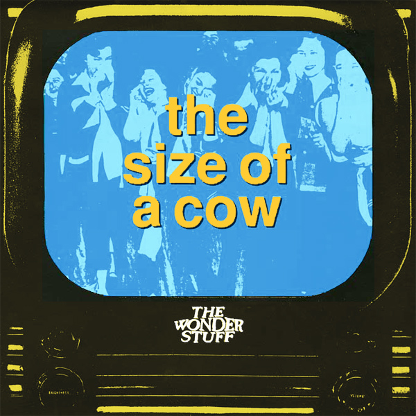 wonder stuff size of a cow 1